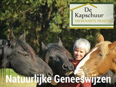 praktijk de kapschuur, Suzan Hordijk, homeopathie voor dieren, natuurlijke geneeswijzen